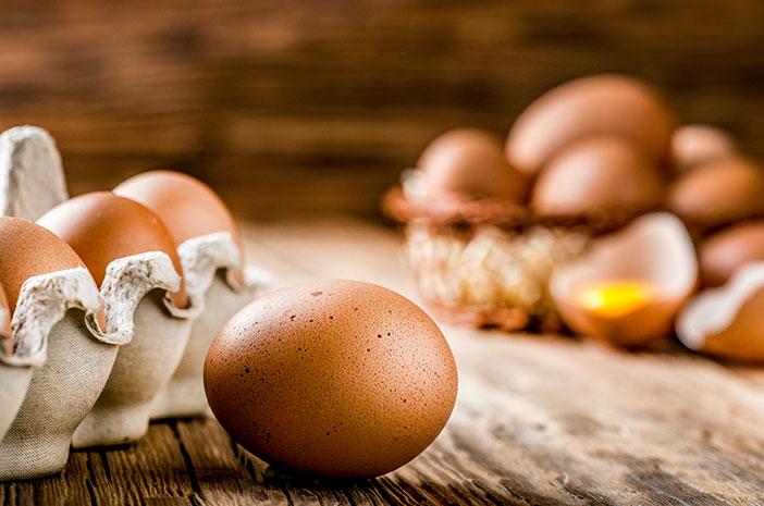 Alergi Telur pada anak