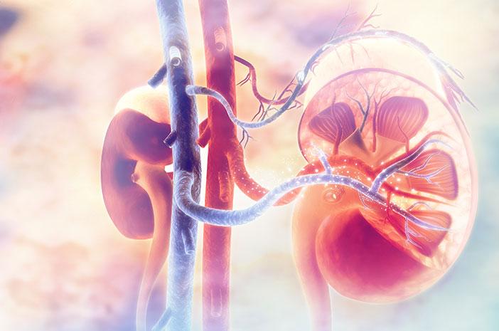 Glomerulonefritis Gangguan Kesehatan pada Ginjal