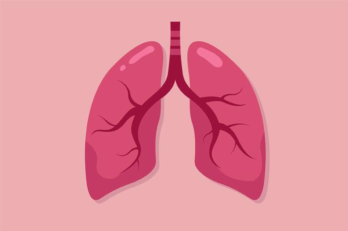 penyebab dan cara mengobati pneumonia