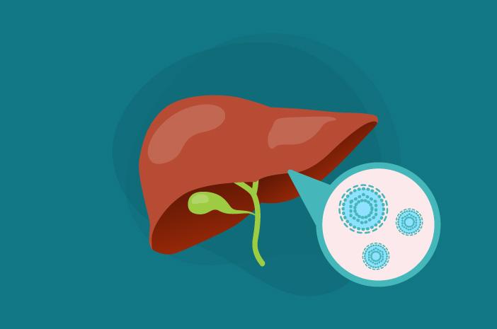 Risiko yang Bisa Ditimbulkan oleh Hepatitis A