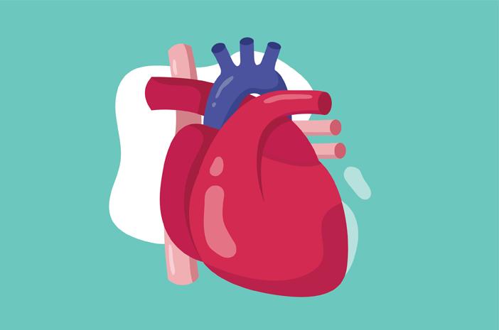 penyakit jantung di usia muda