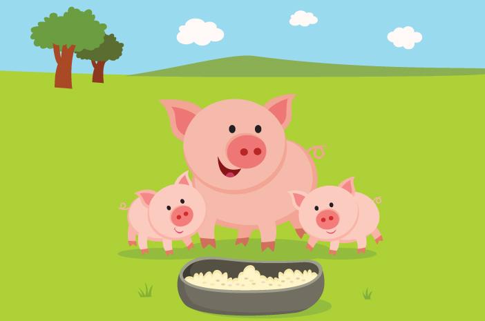 9 Hal yang Perlu Diketahui tentang Flu Babi