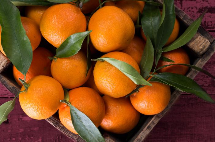 vitamin c untuk ibu hamil, vitamin c