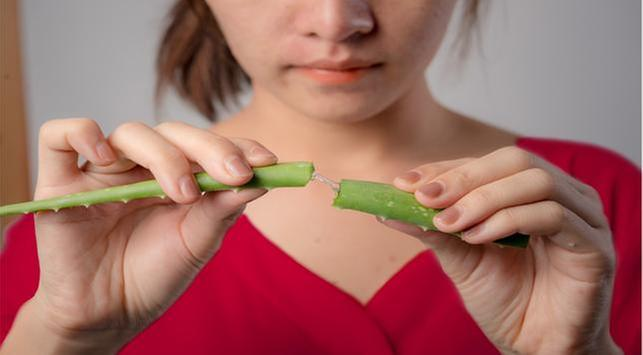 4 Manfaat Makan Lidah Buaya Untuk Kesehatan Tubuh