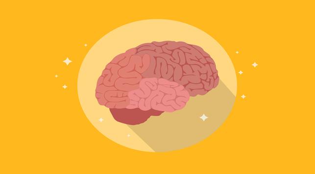 olahraga  mencegah otak menyusut, penyusutan otak,olahraga