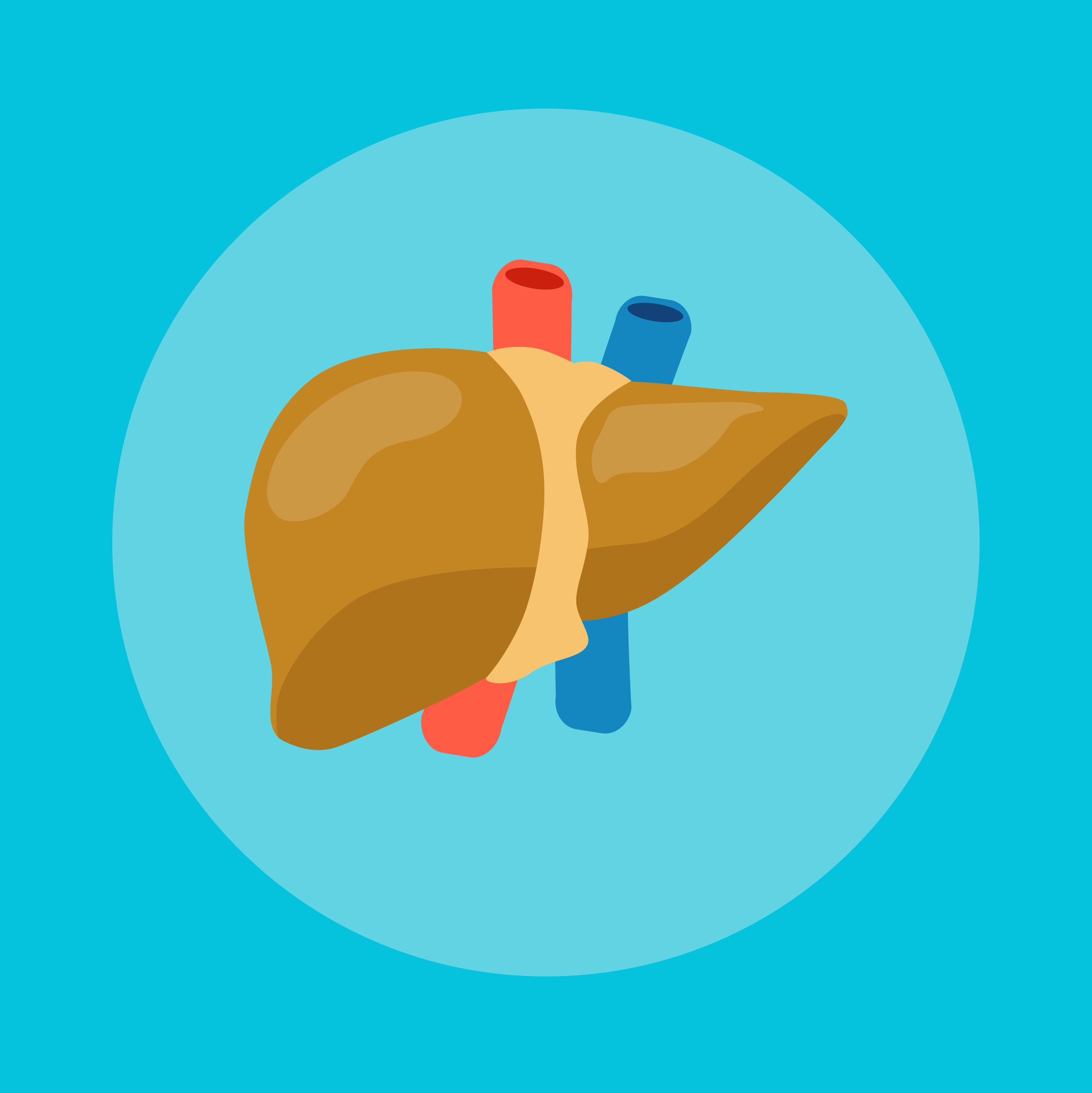 liver,fatty liver,penyakit liver,bahaya hati berlemak,bahaya fatty liver