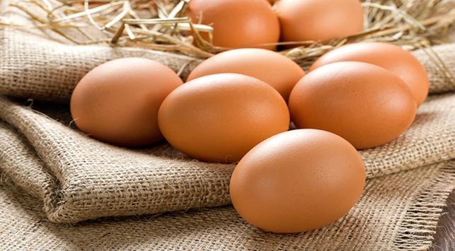 hamil trimester kedua, manfaat telur untuk ibu hamil