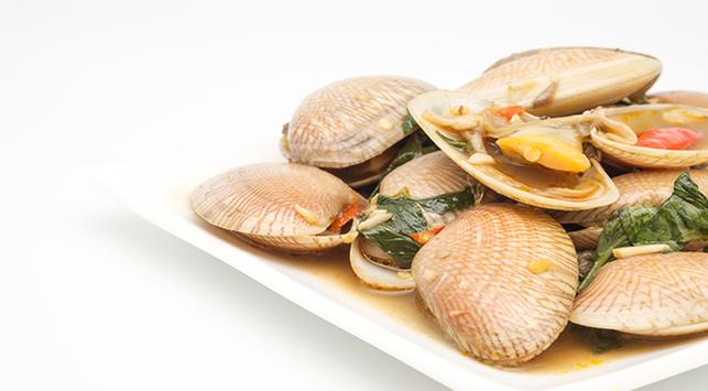 seafood,kerang