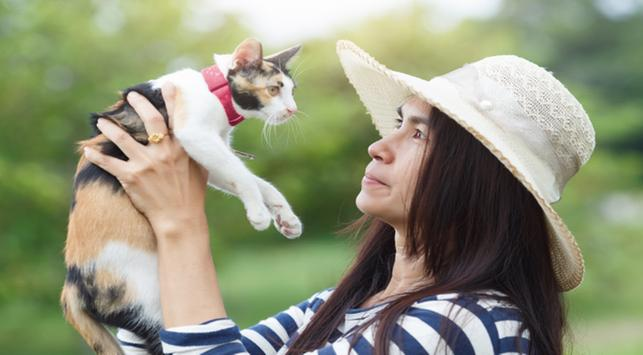 flu kucing, bahaya flu kucing ke manusia