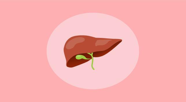 4 Fakta tentang Penyakit Liver