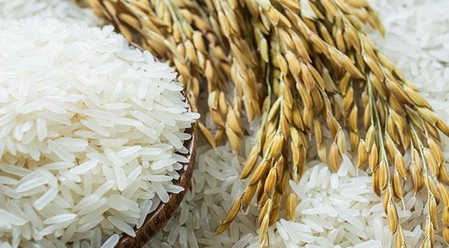 Jenis beras, manfaat beras