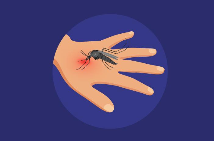 Ini Perbedaan Demam Berdarah dan Infeksi Virus Zika