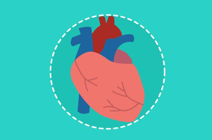 inilah 5 fakta tentang kebocoran katup jantung
