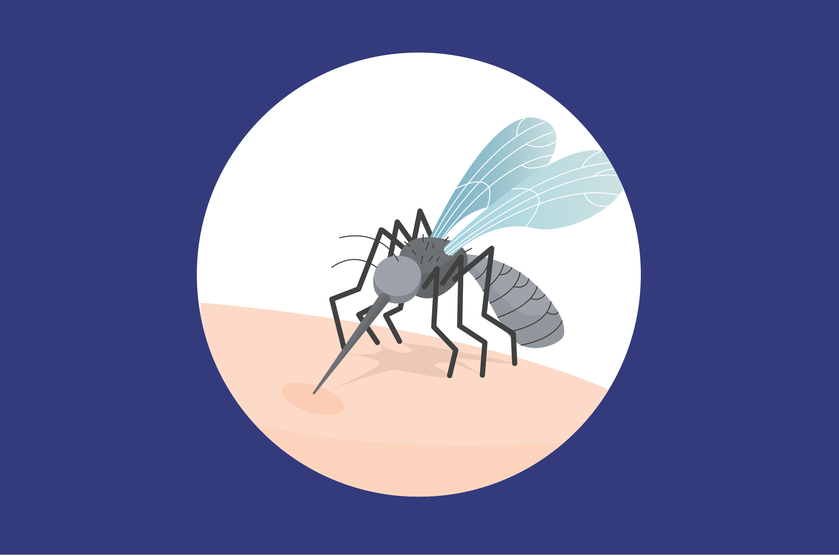 Kenali Cara Penyebaran Filariasis