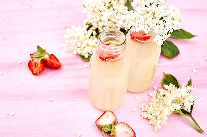 Ketahui Manfaat Minuman Probiotik Bagi Kesehatan