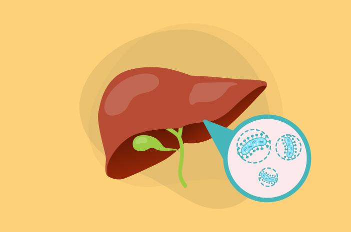 Risiko yang Bisa Ditimbulkan oleh Hepatitis D