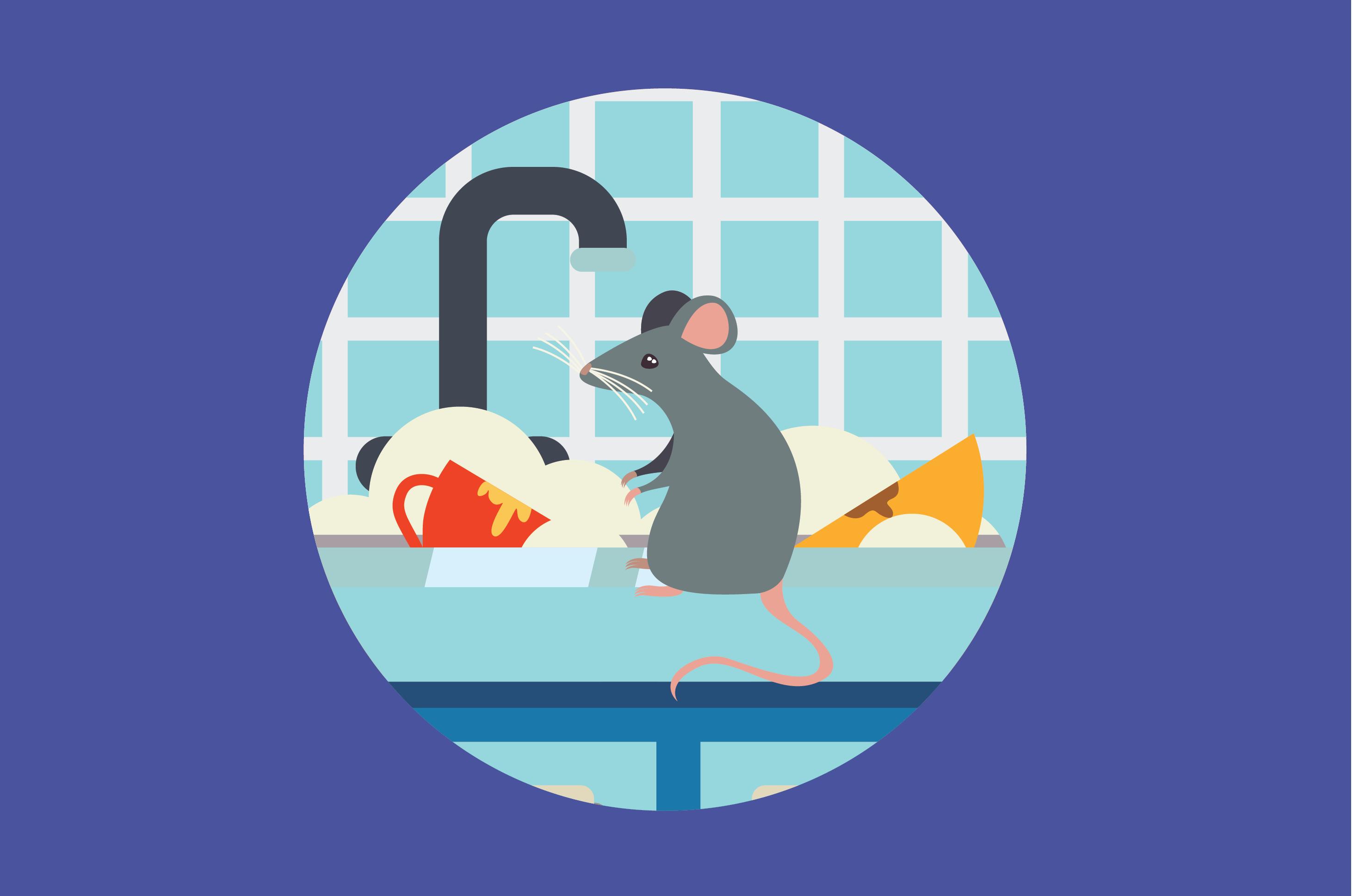 Rumah Kotor, Hati-Hati Bahaya Pes Akibat Tikus