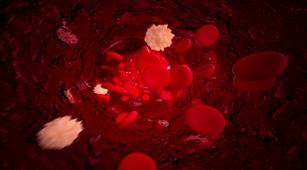 Trombosit dalam Darah Tinggi Bisa Menjadi Penyakit